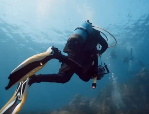 Dive in the big blue of Naxos