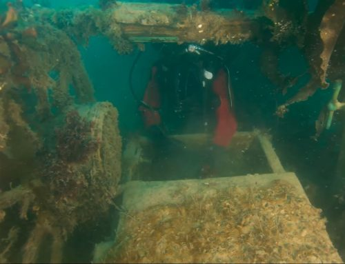 'Frozen in time' wreck sheds new light on Franklin's ill-fated 1845 Arctic quest