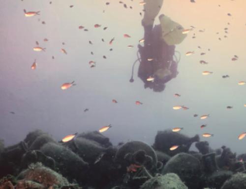 Dive in history-Unterwassertourismus als Zukunftstrend